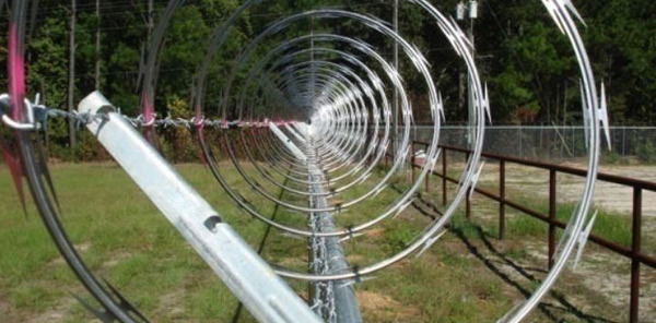 Razor Wire Single Coil And Clipped Concertina For Security