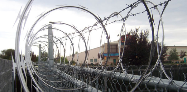 Razor Wire Single Coil and Clipped Concertina for Security Fencing Uses